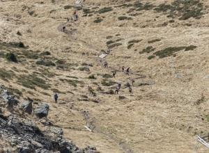 Senale Maddalene Vertical Race 2015 (2)