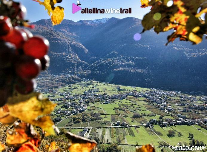 valtellina_wine_trail_02_ph_iosu_iuaristi