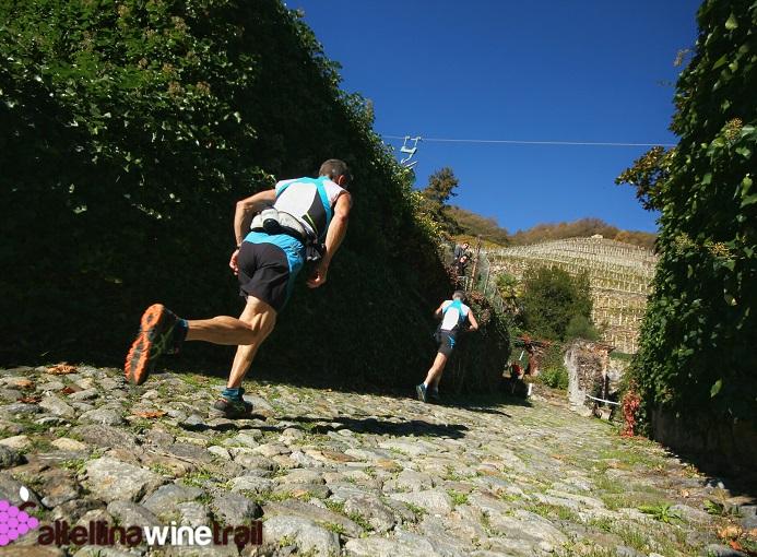 valtellina-wine-trail-credit-iosu-iuaristi_vwt