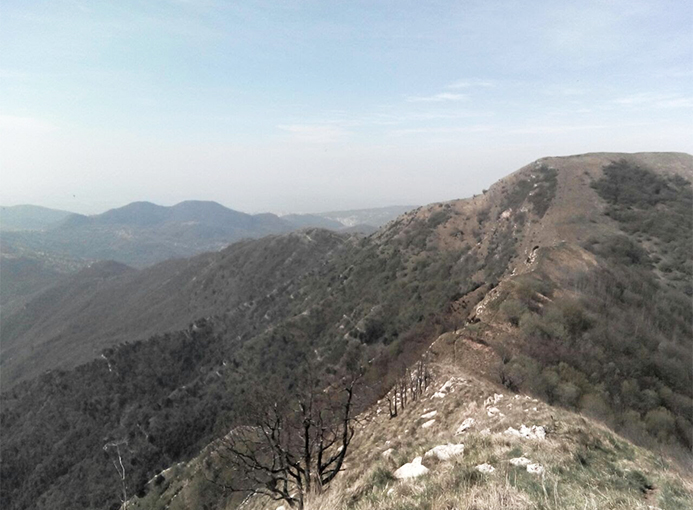 Alvi Trail Liguria (2)