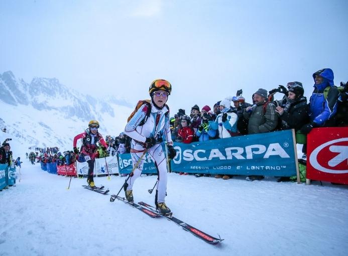 adamello ski raid 2017 fiechter mollaret skialp