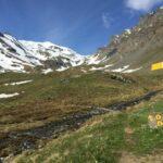 Espace Trail Valsavarenche