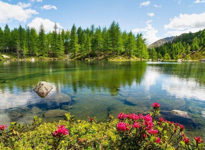 val grosina grosio lago acque sparse