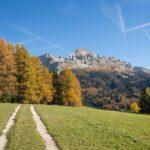 Val d Ega foliage Latemar autunno